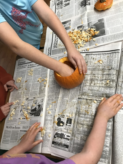 2A predicting and counting with pumpkin seeds!