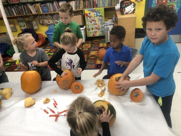 Carving pumpkins with MRS. Webster's kindergarten class.