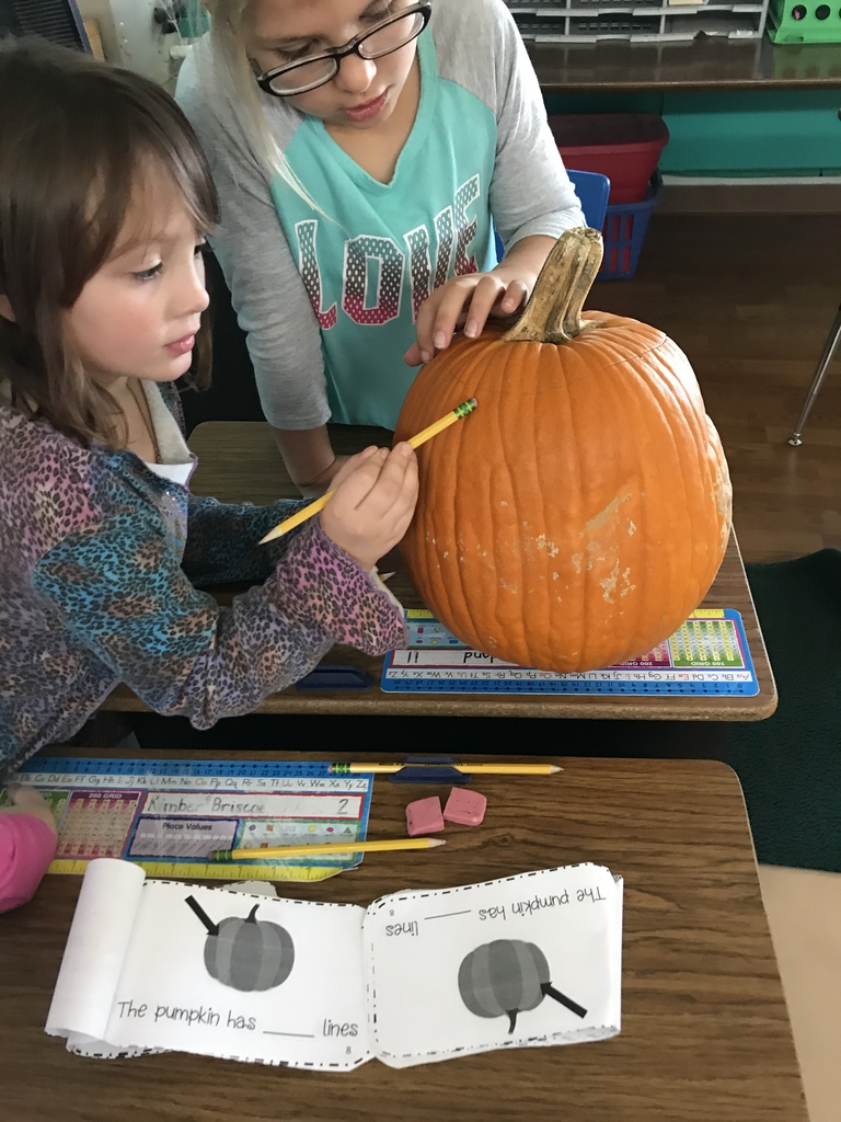 2A pumpkin investigation