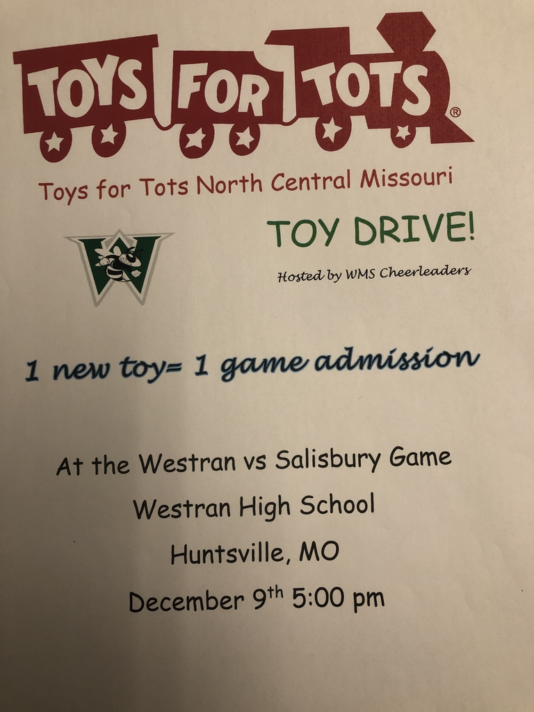 WMS cheerleaders are hosting a toy drive on Dec. 9
